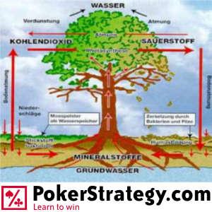 pokerstrategy pokerökologie 300x300