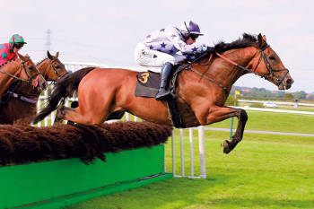 southwell horse racing